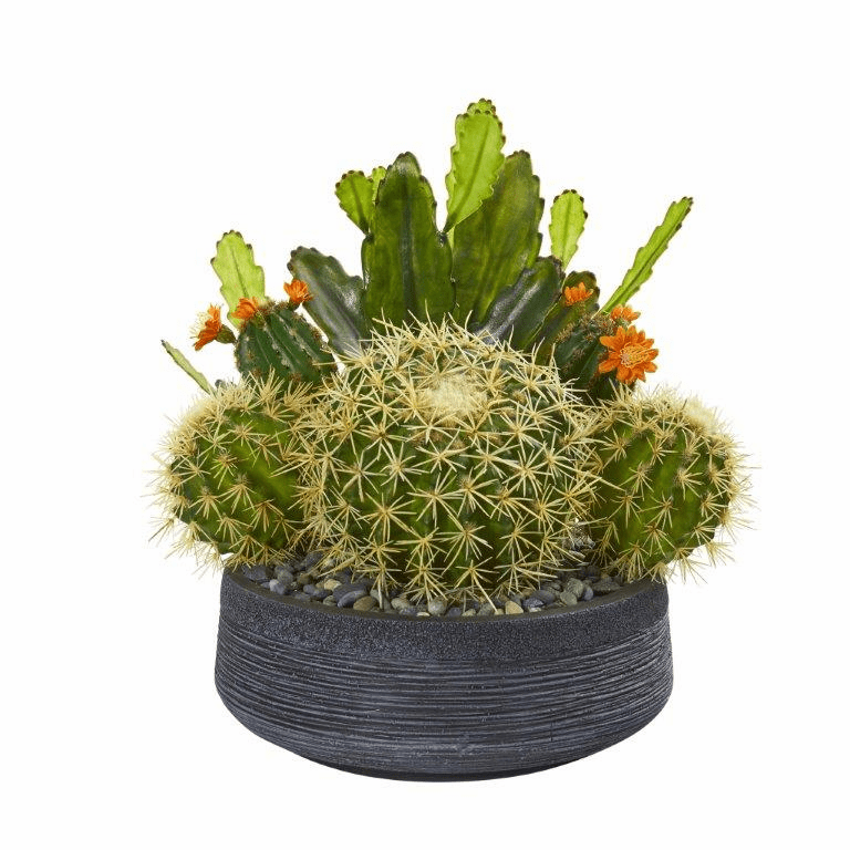 16� Mixed Cactus Artificial Plant in Decorative Bowl