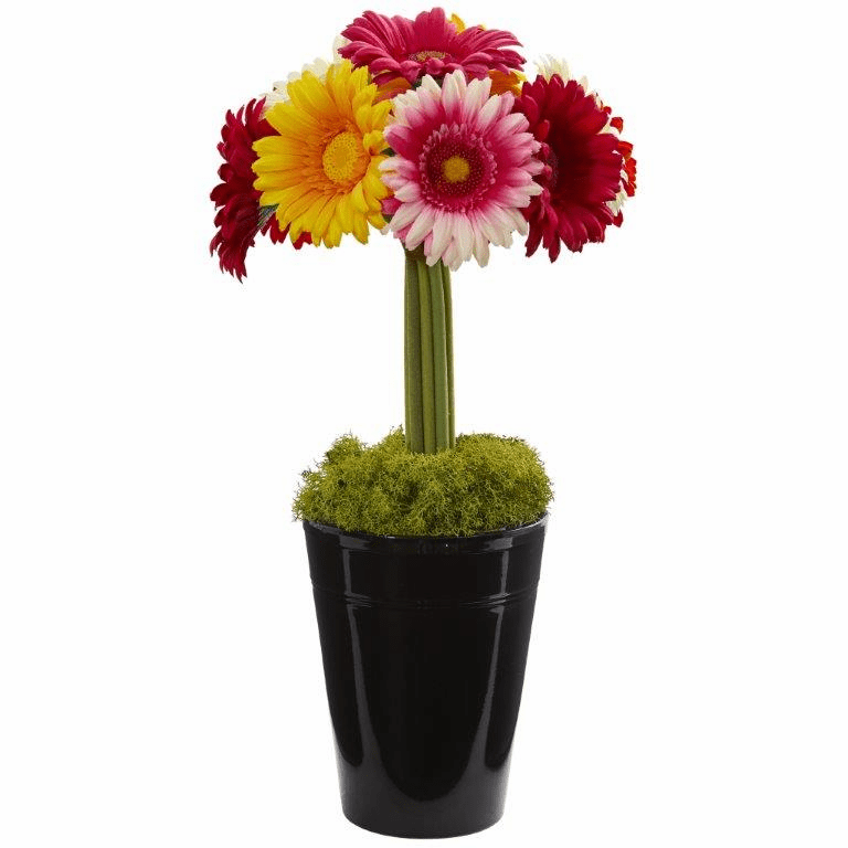 "17"" Gerber Daisy Artificial Arrangement in Black Vase - Assorted"