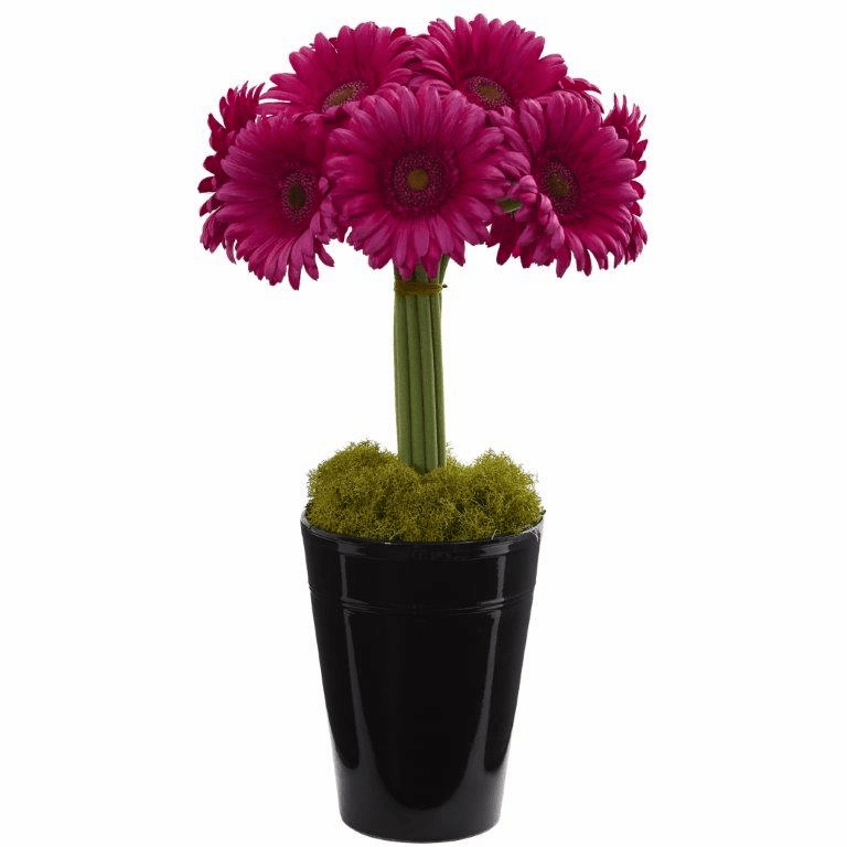 "17"" Gerber Daisy Artificial Arrangement in Black Vase - Beauty"