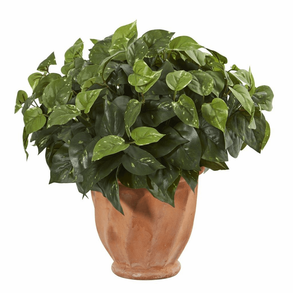 "17"" Pothos Artificial Plant in Terracotta Planter"
