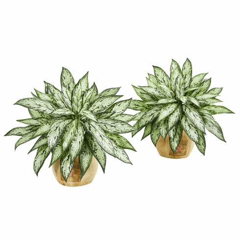 "17"" Silver Queen Artificial Plant in Decorative Planter (Set of 2)"