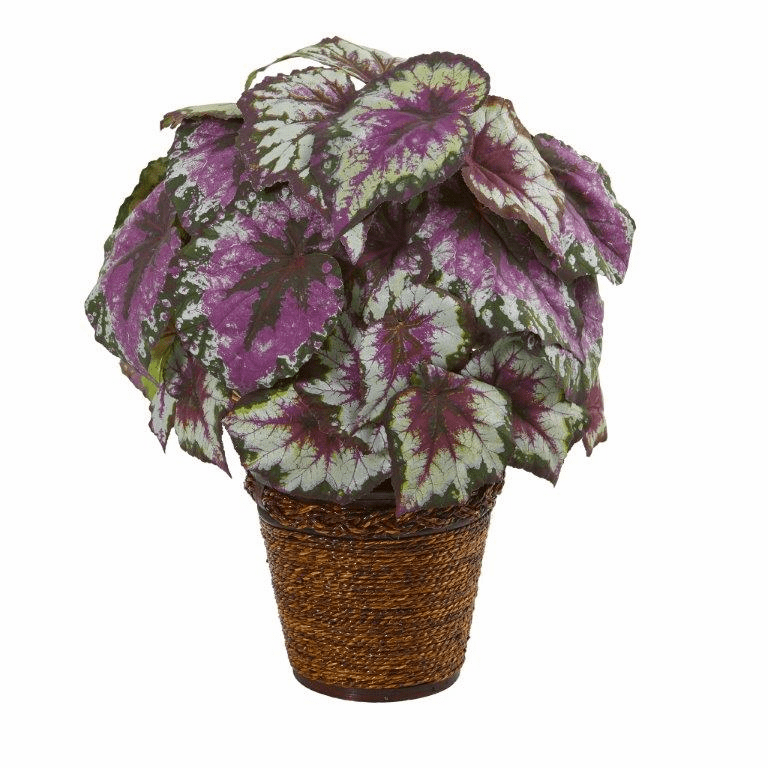 17� Wax Begonia Artificial Plant in Basket