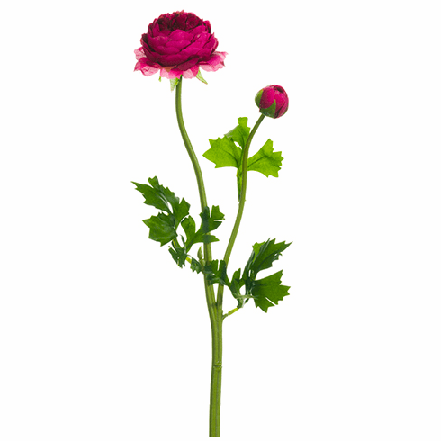 18.9 inch Silk Ranunculus Flower Stem - Set of 12 - More Colors Inside
