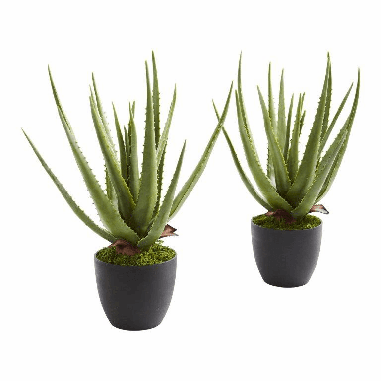 "18"" Aloe Artificial Plant (Set of 2)"