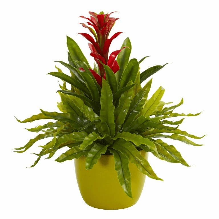 "18"" Bromeliad and Fern Artificial Plant in Green Vase - Red"