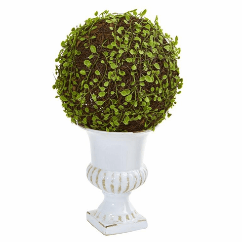 "18"" Mohlenbechia Ball Artificial Topiary in White Urn"