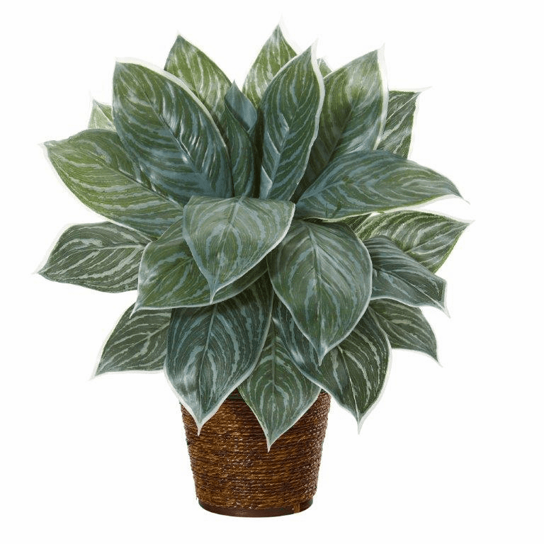 18� Silver Aglonema Artificial Plant in Basket (Real Touch)