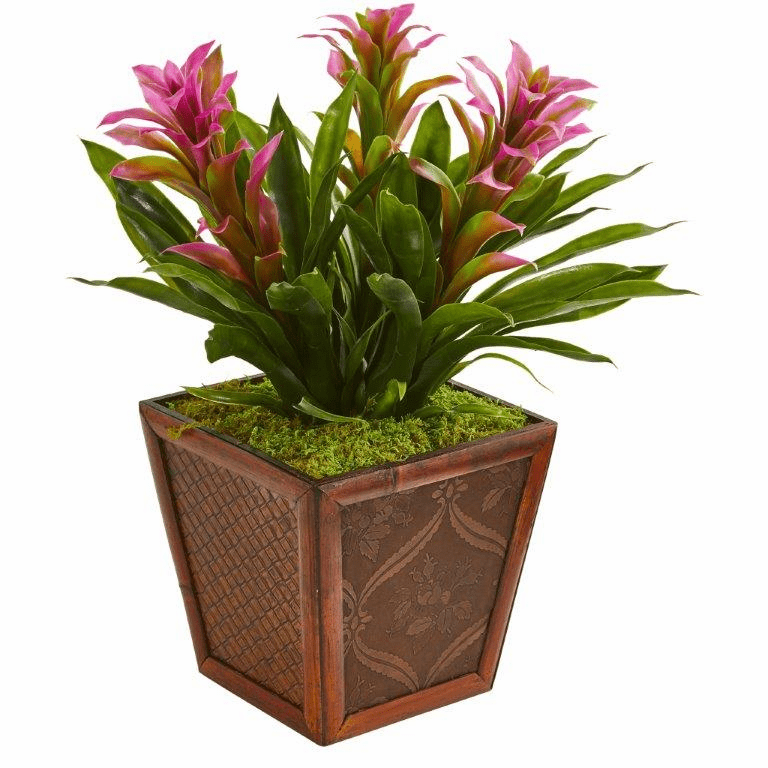 "18"" Triple Bromeliad Tropical Artificial Plant in Decorative Planter - Purple"