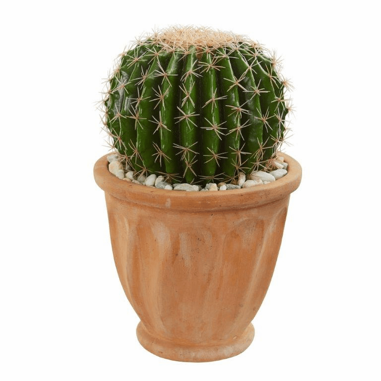 "19"" Cactus Artificial Plant in Terra Cotta Planter"