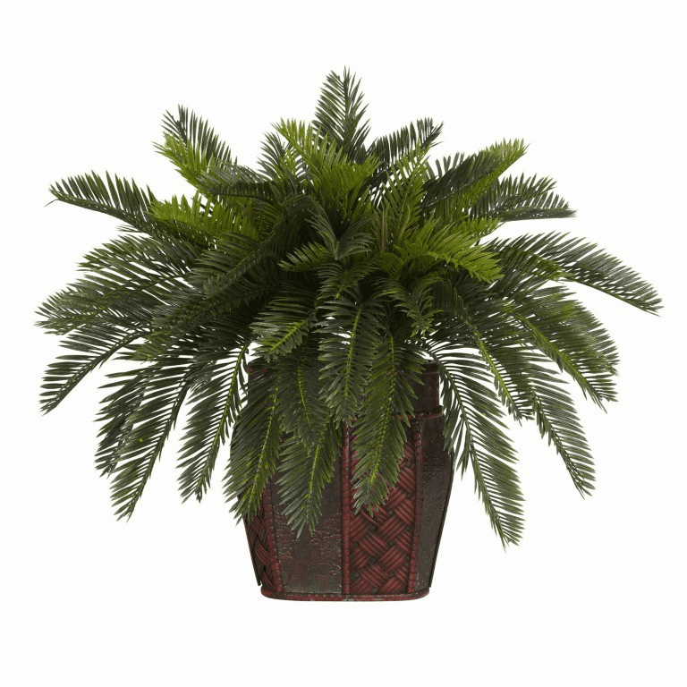 "19"" Double Cycas with Vase Silk Plant"