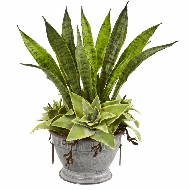 19� Sansevieria and Succulent Artificial Plant in Metal Bowl