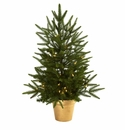 2.5� Pre Lit Christmas Tree in Gold Planter
