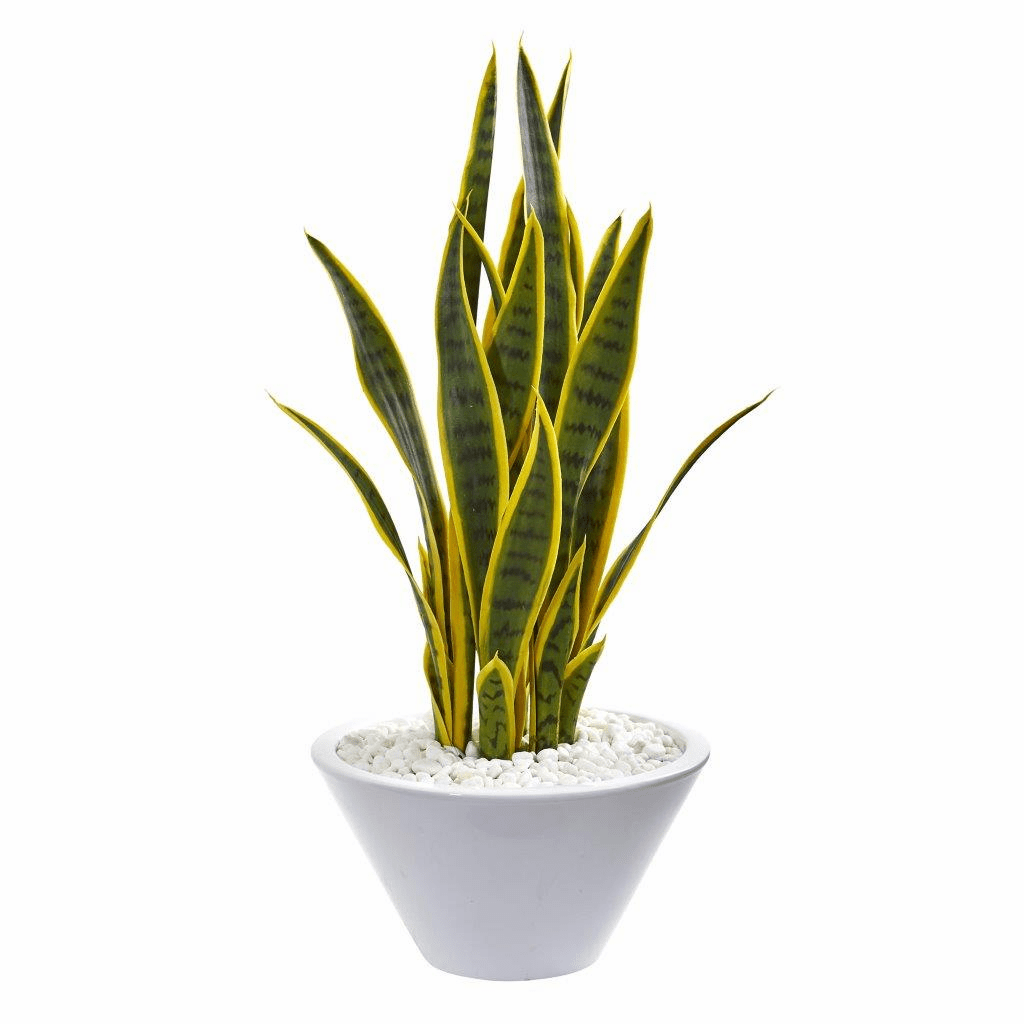 2� Sansevieria Artificial Plant in White Bowl