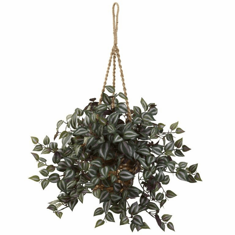 "20"" Artificial Wandering Jew Hanging Bush in Basket"