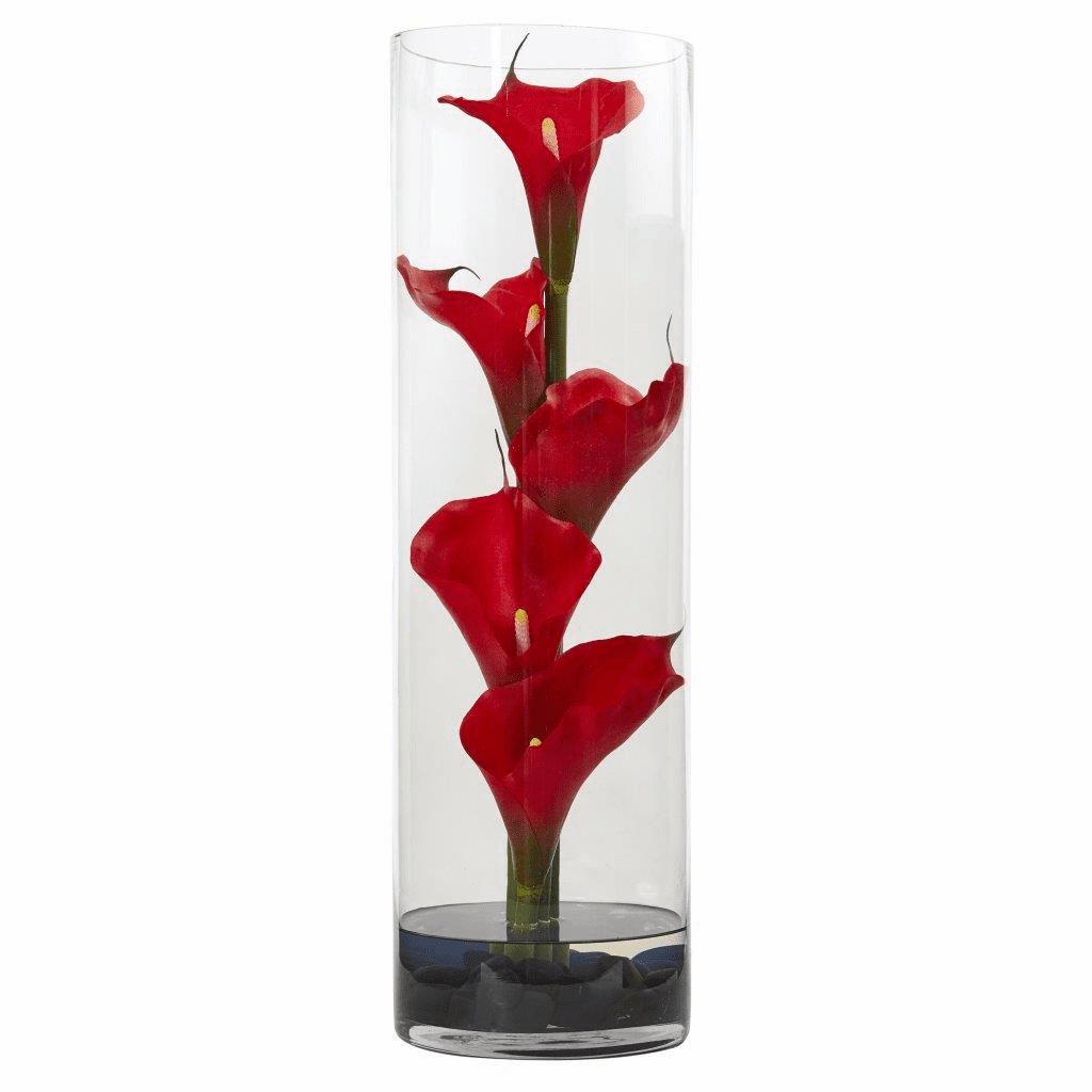 20� Calla Lily in Cylinder Glass