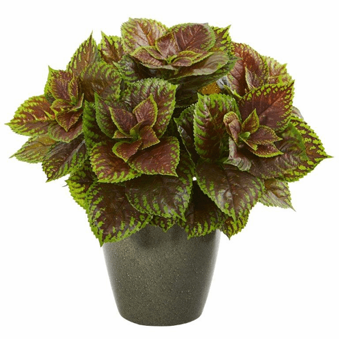 "20"" Coleus Artificial Plant in Green Planter (Real Touch)"