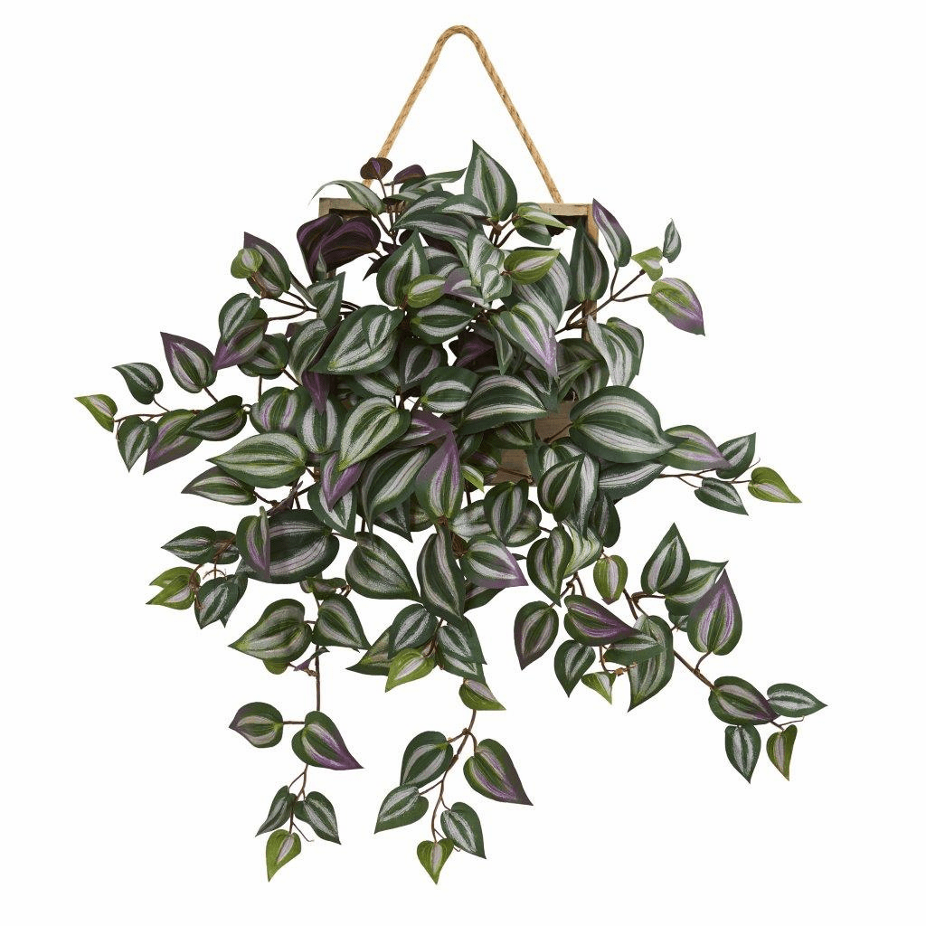 20� Wandering Jew Artificial Plant in Decorative Hanging Frame