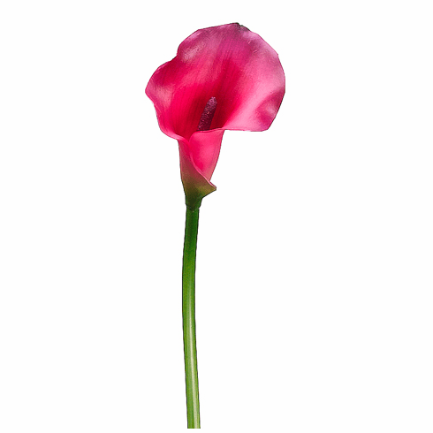 """21"""" Artificial PVC Calla Lily Flower Stem - Set of 12 (Shown in Beauty)"""