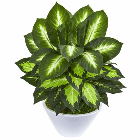 "21"" Golden Dieffenbachia Artificial Plant in White Planter"