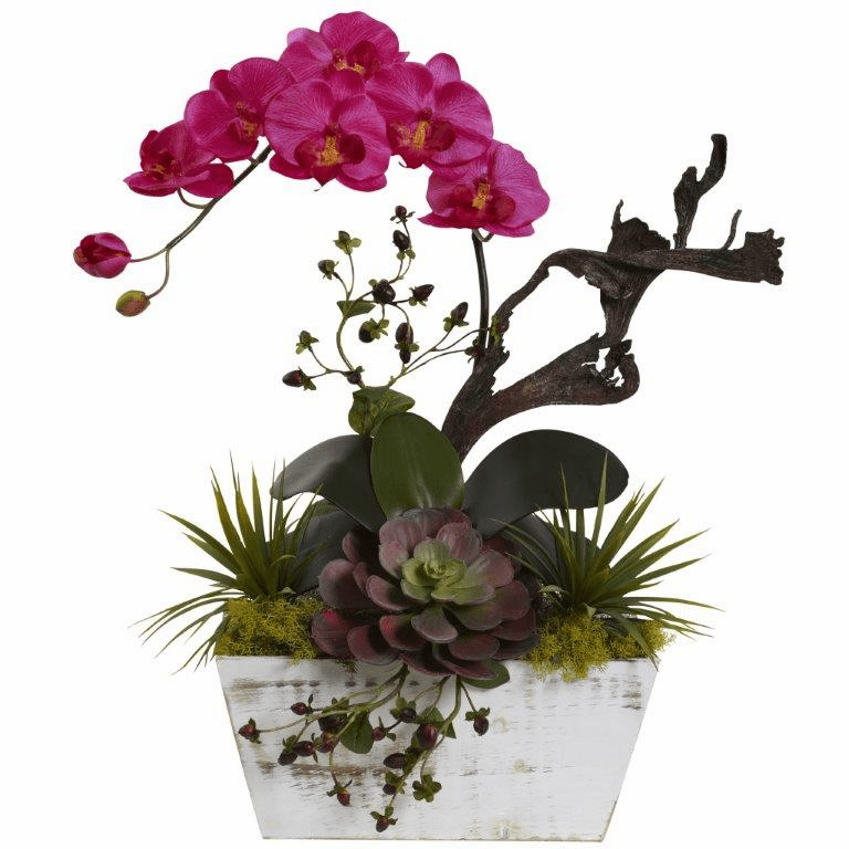 "21"" Orchid & Succulent Garden with White Wash Planter - Beauty"