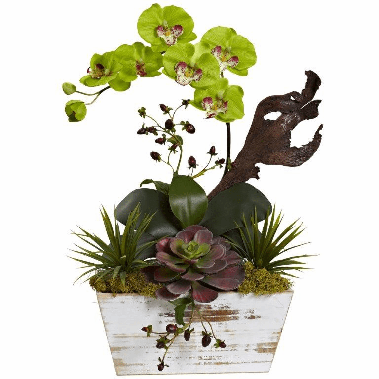 "21"" Orchid & Succulent Garden with White Wash Planter - Green"