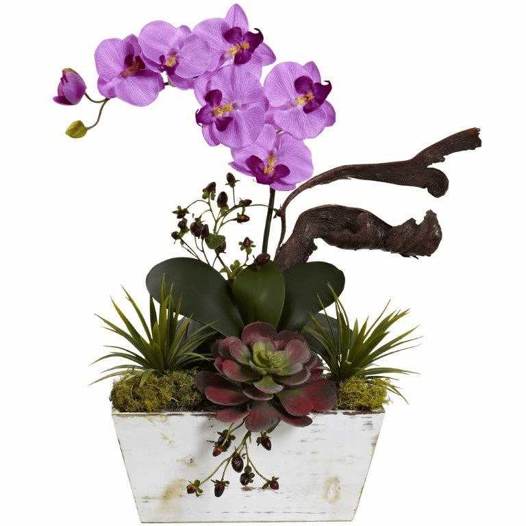 "21"" Orchid & Succulent Garden with White Wash Planter - Mauve"
