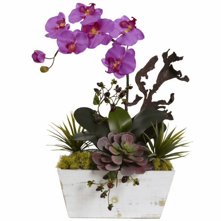 "21"" Orchid & Succulent Garden with White Wash Planter - Orchid"