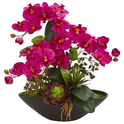 """21"""" Phalaenopsis Orchid Flower and Mixed Succulent Garden Artificial Arrangement in Black Vase - Beauty"""