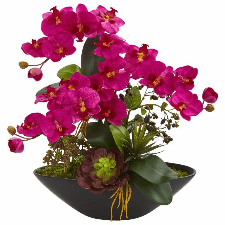 "21"" Phalaenopsis Orchid Flower and Mixed Succulent Garden Artificial Arrangement in Black Vase - Beauty"