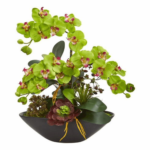 """21"""" Phalaenopsis Orchid Flower and Mixed Succulent Garden Artificial Arrangement in Black Vase - Green"""