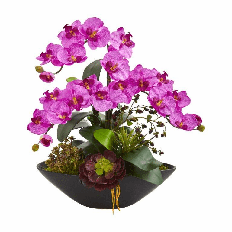 "21"" Phalaenopsis Orchid Flower and Mixed Succulent Garden Artificial Arrangement in Black Vase - Mauve"