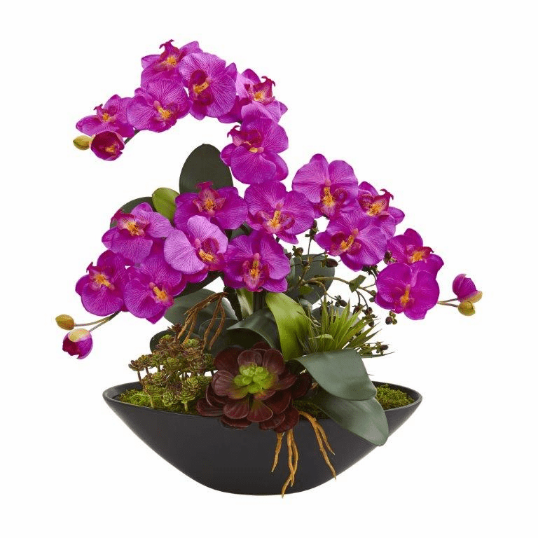 "21"" Phalaenopsis Orchid Flower and Mixed Succulent Garden Artificial Arrangement in Black Vase - Orchid"