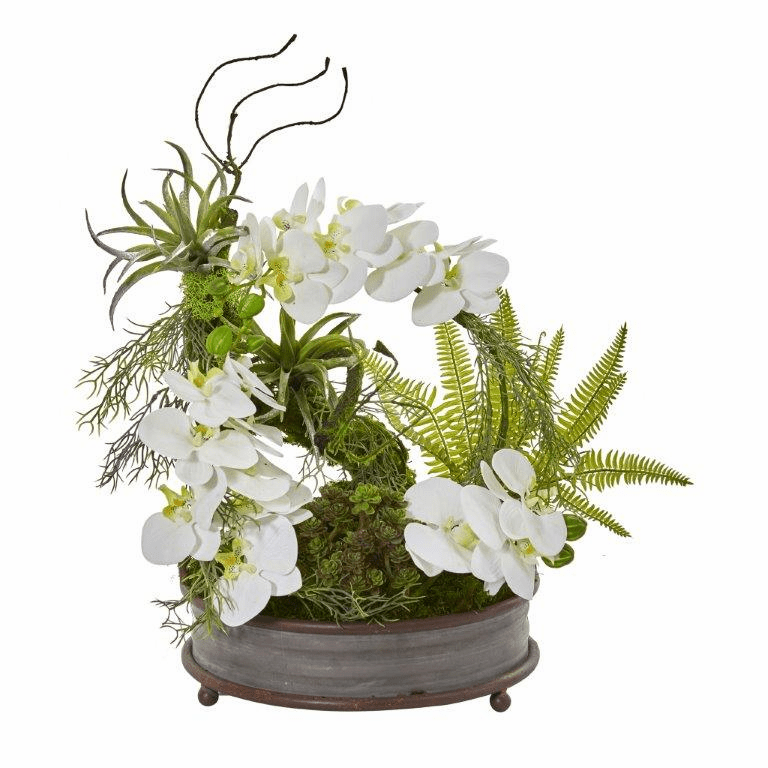 21� Phalaenopsis Orchid, Succulent and Fern Artificial Arrangement in Metal Tray