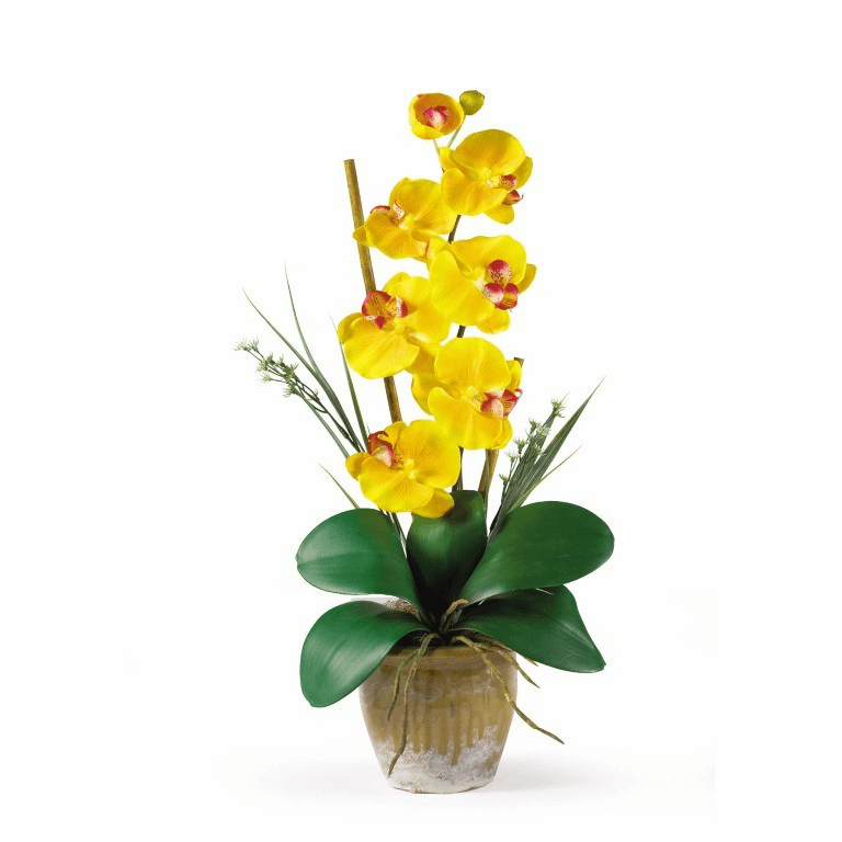 "21"" Single Stem Phalaenopsis Artificial Orchid Arrangement - Golden Yellow"