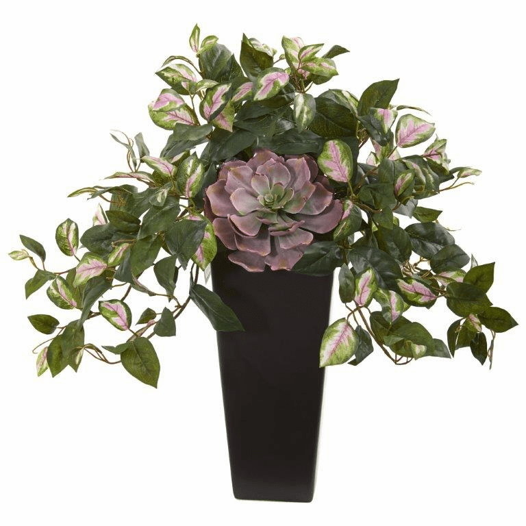 22� Echeveria Succulent and Hoya Artificial Plant in Black Vase