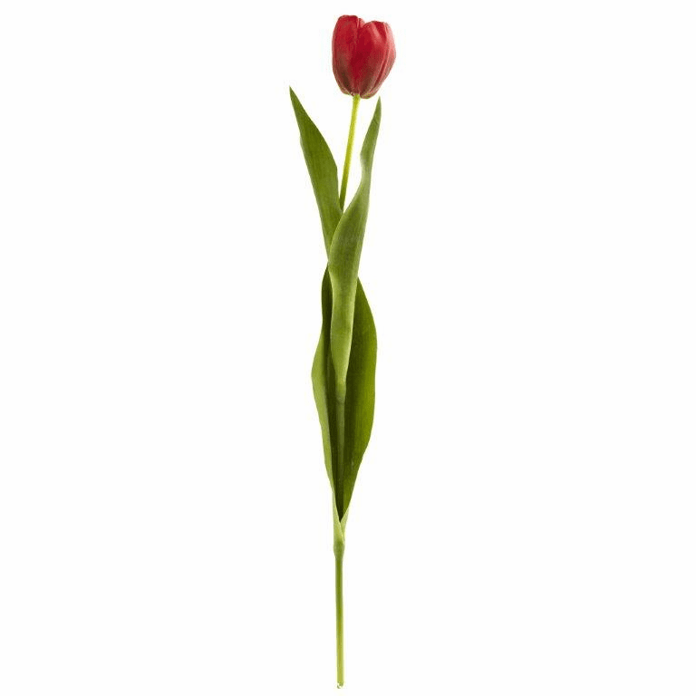 22� Tulip Artificial Flower (Set of 8) - Red