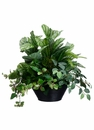 """23"""" Artificial Peperomia, Fittonia, Fern, Peacock and Protea Plant Arrangement in Bamboo Bowl"""