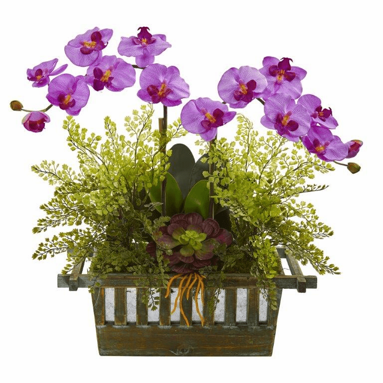"23"" Orchid, Succulent and Maiden Hair Artificial Arrangement  - Mauve"