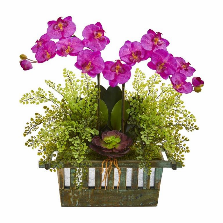 "23"" Orchid, Succulent and Maiden Hair Artificial Arrangement  - Orchid"