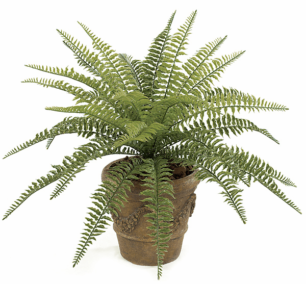 "23"" Outdoor Artificial Boston Fern Bush - UV Infused - Non Potted"