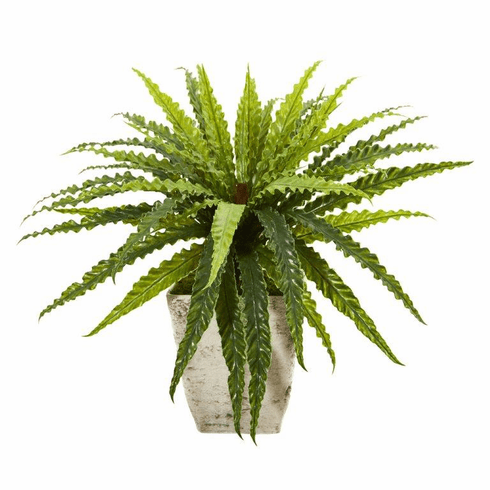 "24"" Asplenium Artificial Plant in Country White Planter"
