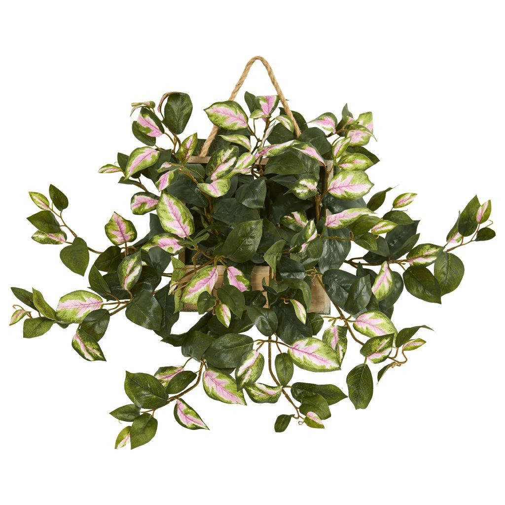 24� Hoya Artificial Plant in Decorative Hanging Frame
