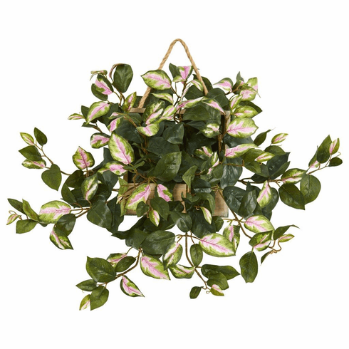 "24"" Hoya Artificial Plant in Decorative Hanging Frame"