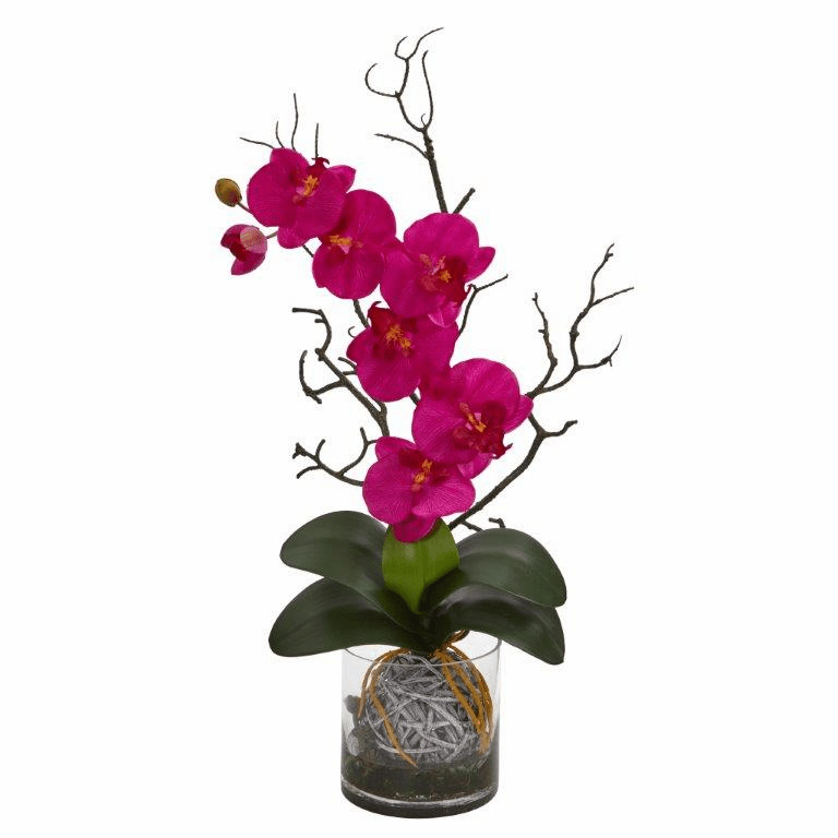 "24"" Phalaenopsis Orchid Artificial Arrangement in Vase - Beauty"