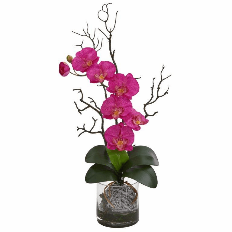 "24"" Phalaenopsis Orchid Artificial Arrangement in Vase - Dark Pink"