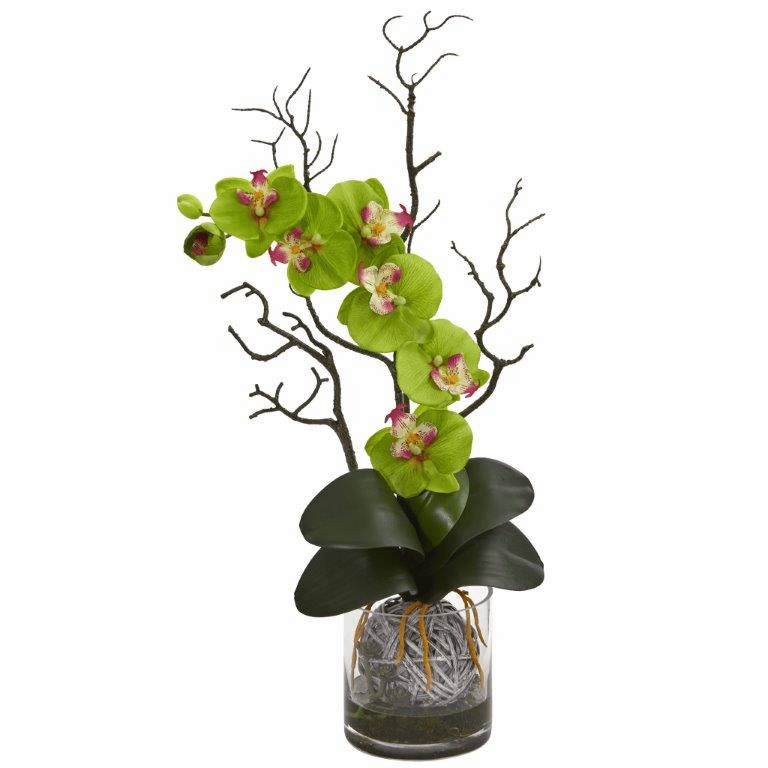 "24"" Phalaenopsis Orchid Artificial Arrangement in Vase - Green"
