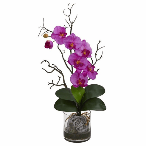 """24"""" Phalaenopsis Orchid Artificial Arrangement in Vase - Orchid"""