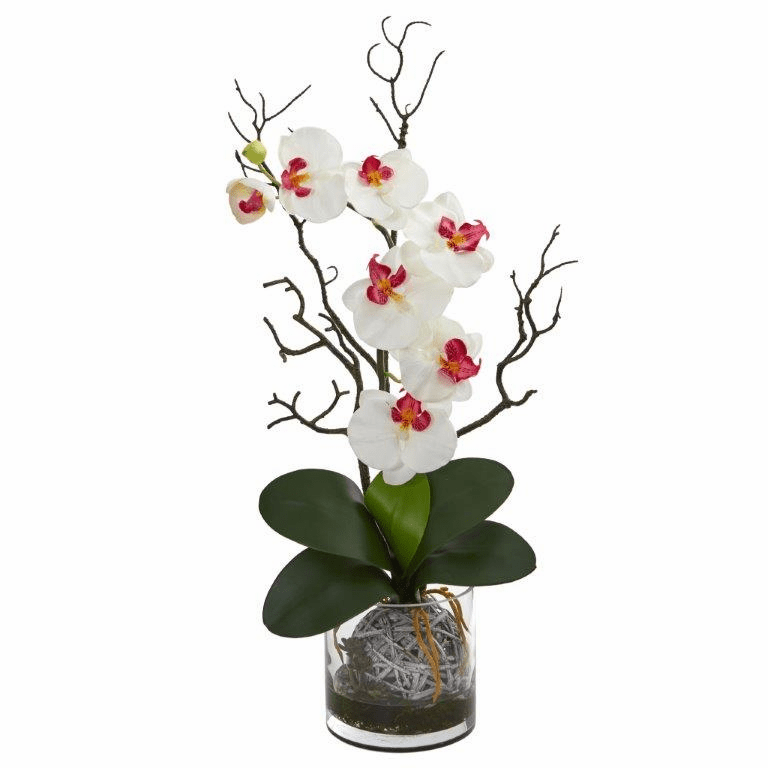 "24"" Phalaenopsis Orchid Artificial Arrangement in Vase - White"