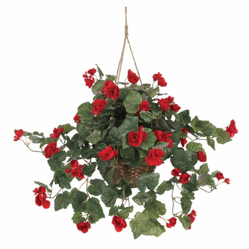 "24"" Red Begonia Hanging Flower Basket"