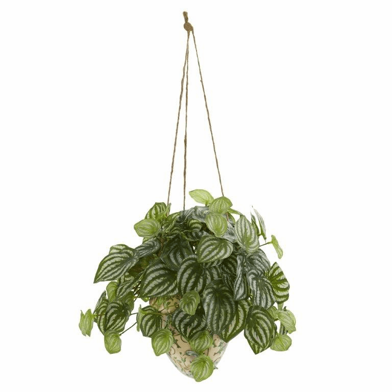 24� Watermelon Peperomia Artificial Plant in Hanging Vase (Real Touch)